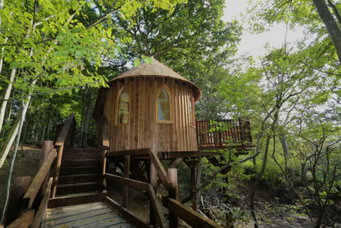Airbnb Luxurious Treehouse