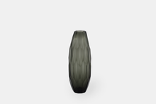 Load image into Gallery viewer, Drake 27 Glass vase