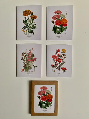 Botanical Greeting Cards- Set of 4