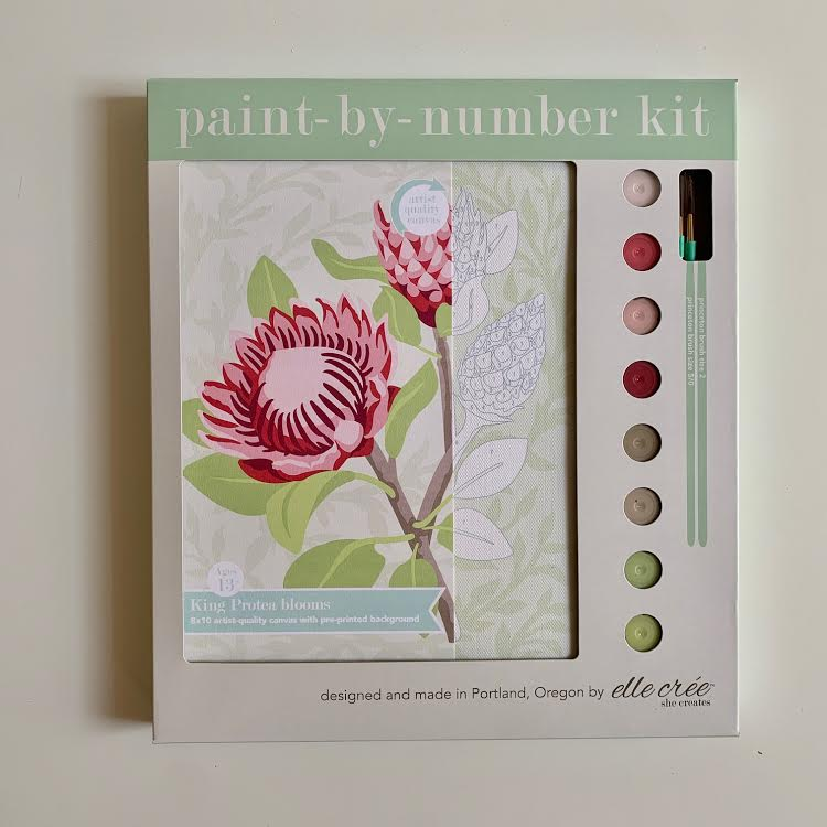 King Protea Paint by Number Kit