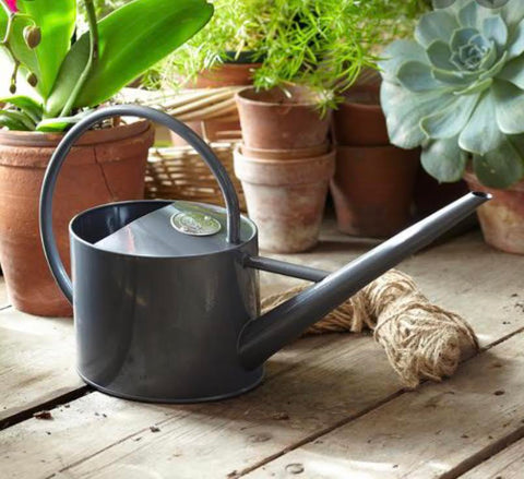 Sophie Indoor Watering Can