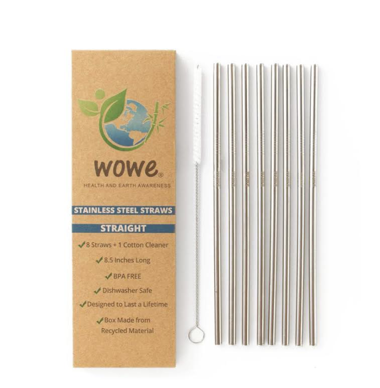 Eco Friendly Stainless Steel Straws- 8 pack