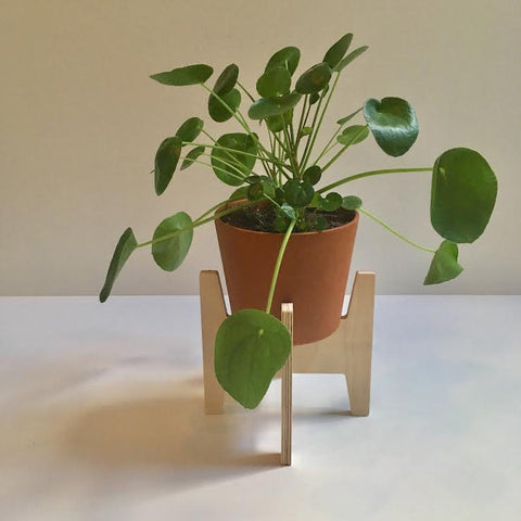 Modern Love Made Plant Stands - 8