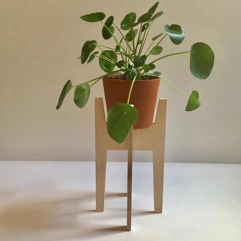 Modern Love Made Plant Stands- 15