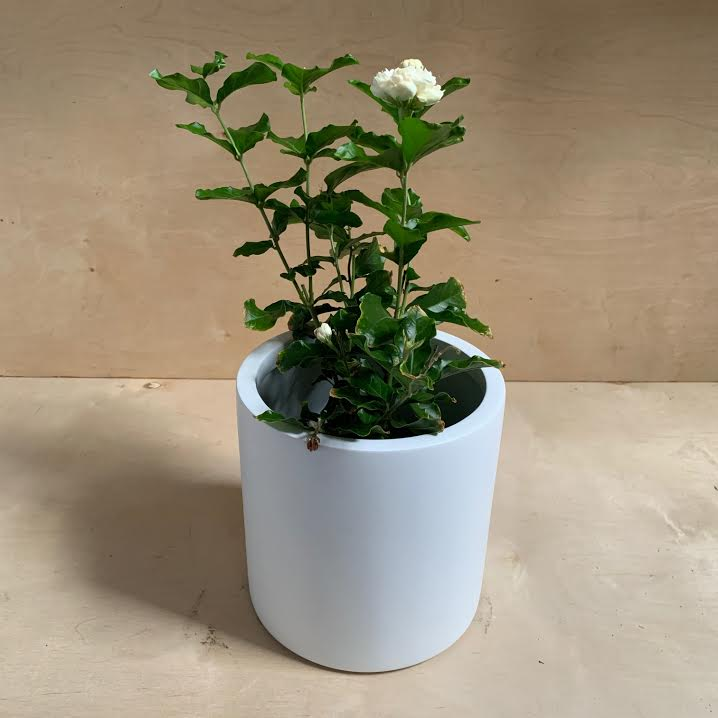 Puk Matte White Planter- Medium
