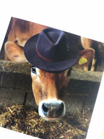 Load image into Gallery viewer, cow with hat on photo from gimbletts book