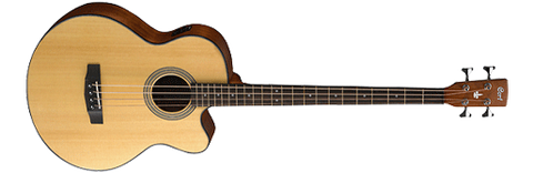 SJB5 Acoustic Bass