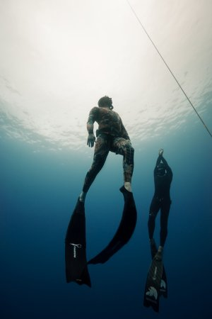 F.i.i. Level 1 and 2 Freediving Courses