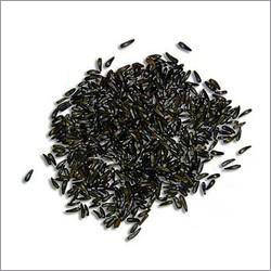 Black Cumin Seed Scalp Psoriasis Treatment