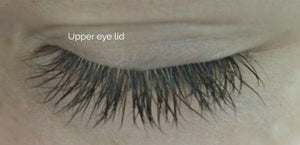 Eye Lash Lengthing Serum