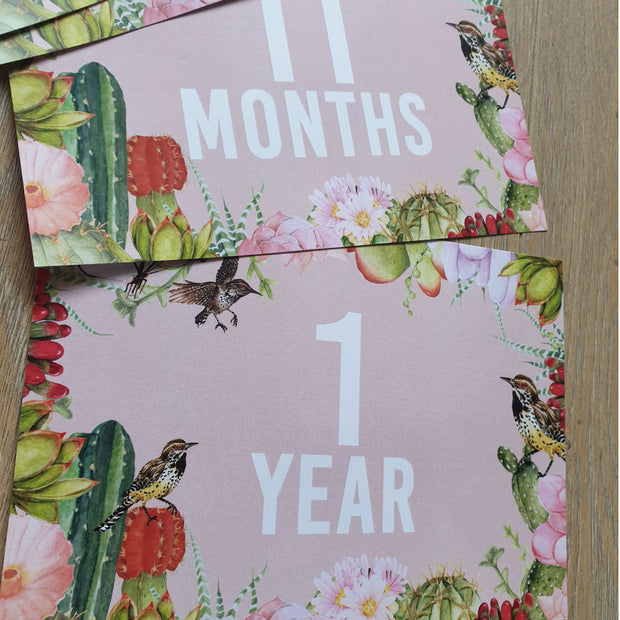 Downloadable 'Alex' Baby Milestone Cards 0-12 months