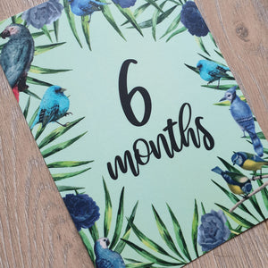 'Francis' Baby Milestone Cards 0-12 months