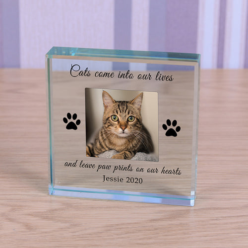 Personalised Your Cat Photo Paw Prints Glass Keepsake Token
