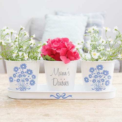 Personalised Daisy Plant Pots & Tray Set