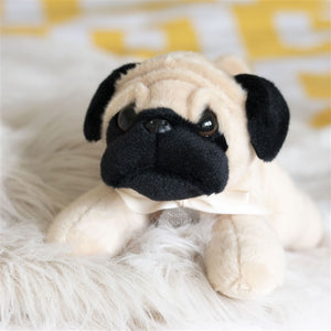 Personalised Pug Cuddly Toy