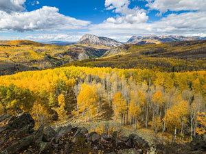 8 Best Fall Foliage Adventures in Colorado
