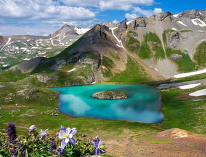 The 8 Best Wildflower Hikes in Colorado