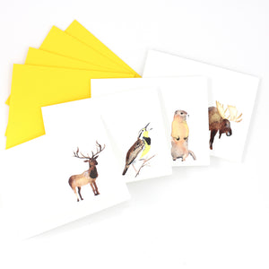 Colorado Wildlife Notecard Set