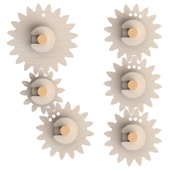 Gears Levers Pulleys science kit