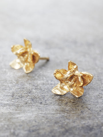 14K Jasmine Blossom Flower Post Earrings - Yellow Gold