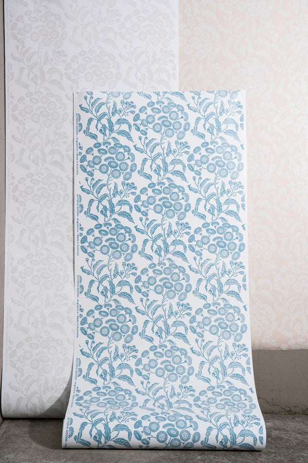 Angophora Powder Blue Wallpaper