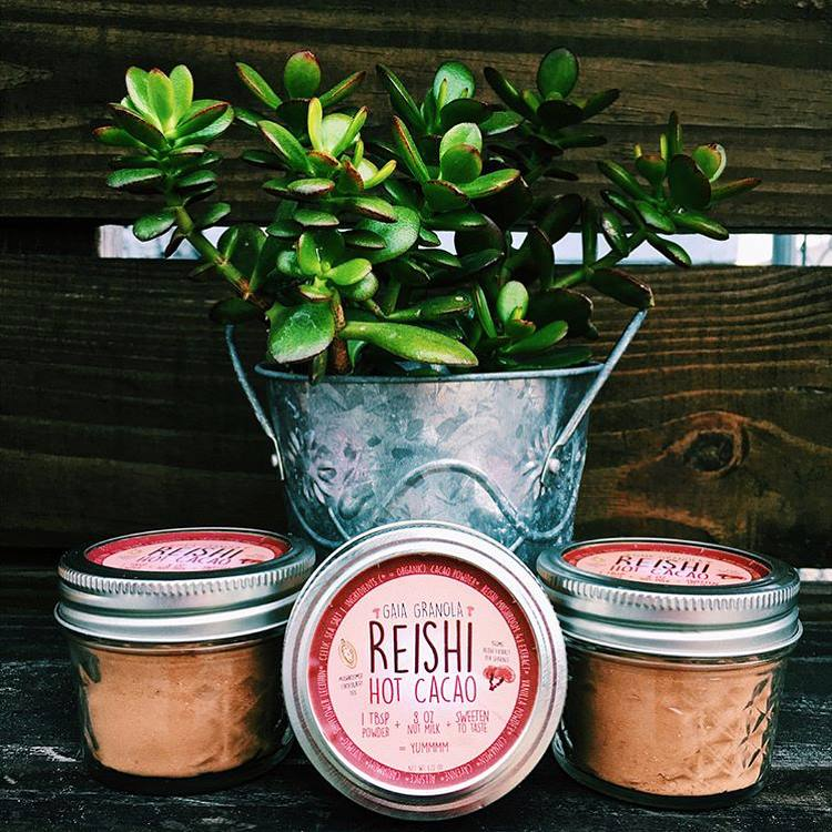 Reishi Hot Cacao Powder