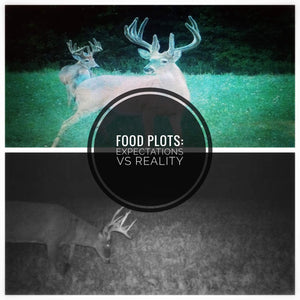Food Plots: Expectations vs Reality