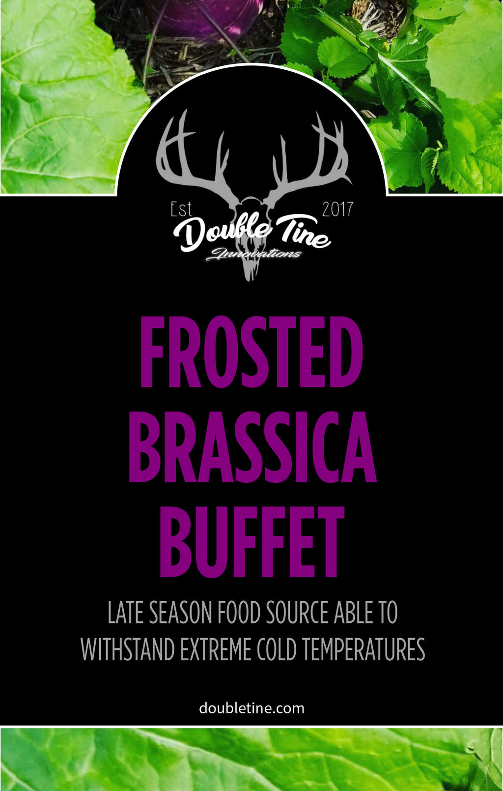 Frosted Brassica Buffet - Double Tine Innovations
