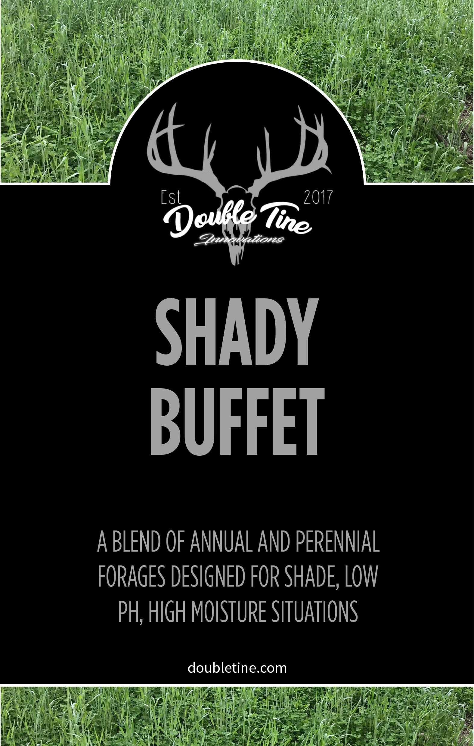 Shady Buffet