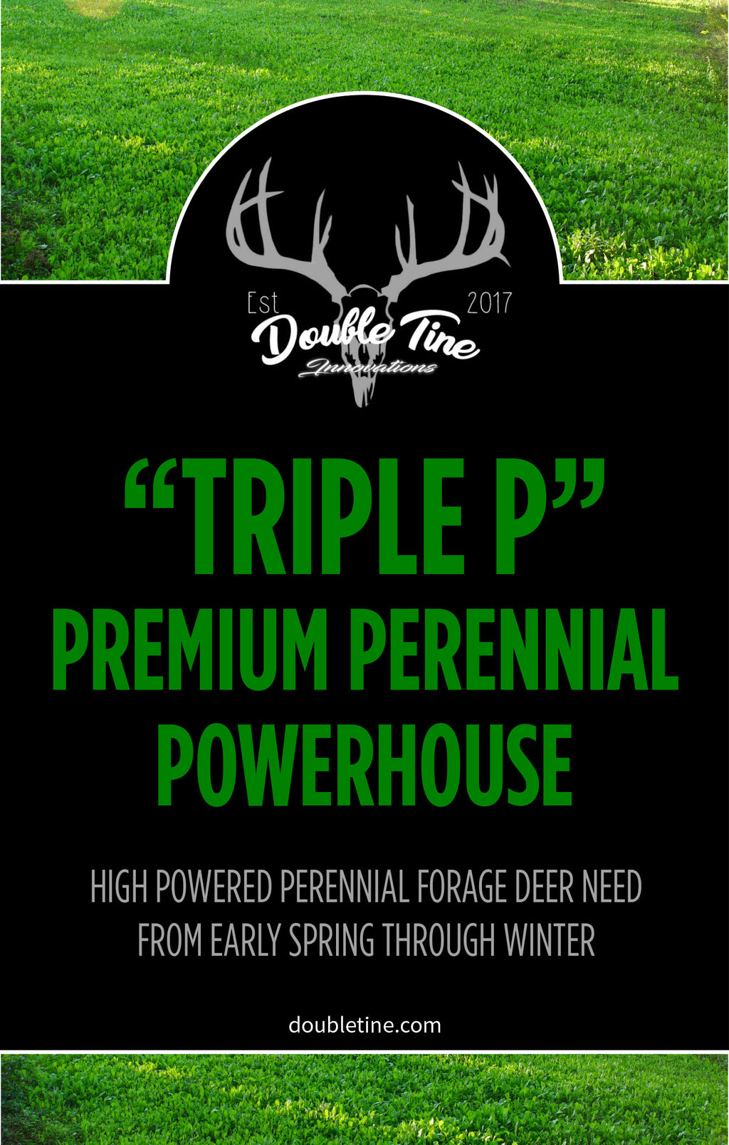 Triple P - Premium Perennial Powerhouse - Double Tine Innovations