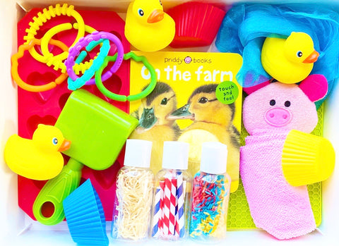 Farm Friends Sensory Kit *Toddler Friendly*