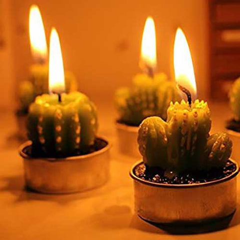 Cactus Candles - OddGifts.com