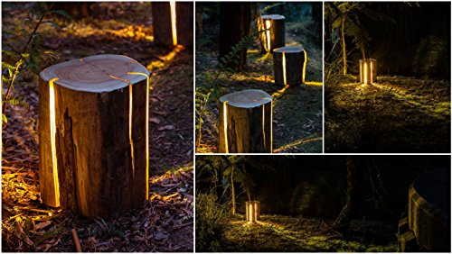 Tree Trunk Light - OddGifts.com