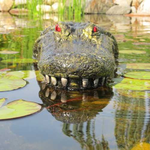 Floating Gator Decoy - OddGifts.com