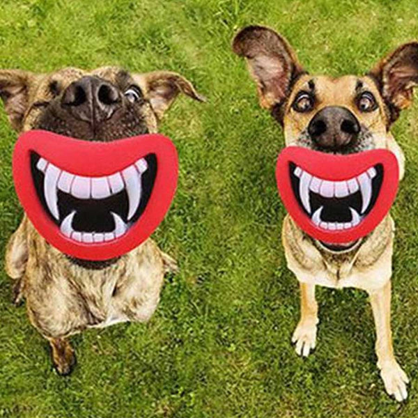 Pet Teeth Chew Toy - OddGifts.com