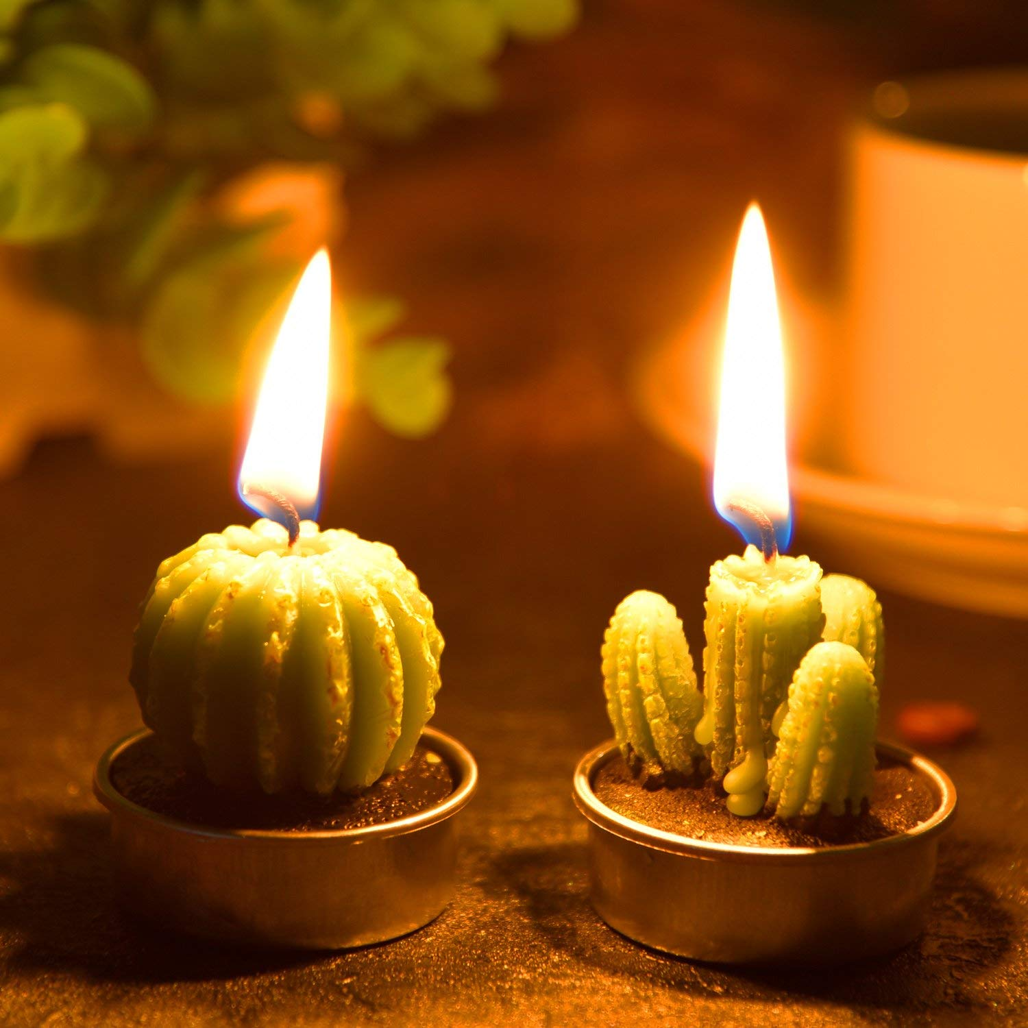 Cactus and Succulent Tealight Candles - oddgifts.com