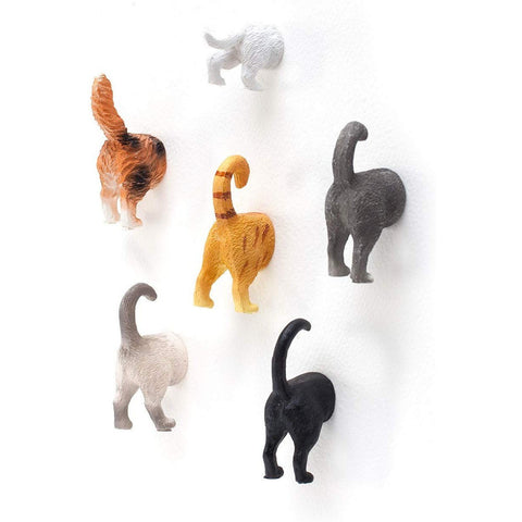 Cat Butt Magnets - oddgifts.com