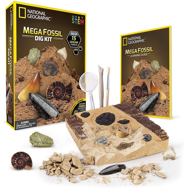 Fossil Dig Kit - oddgifts.com