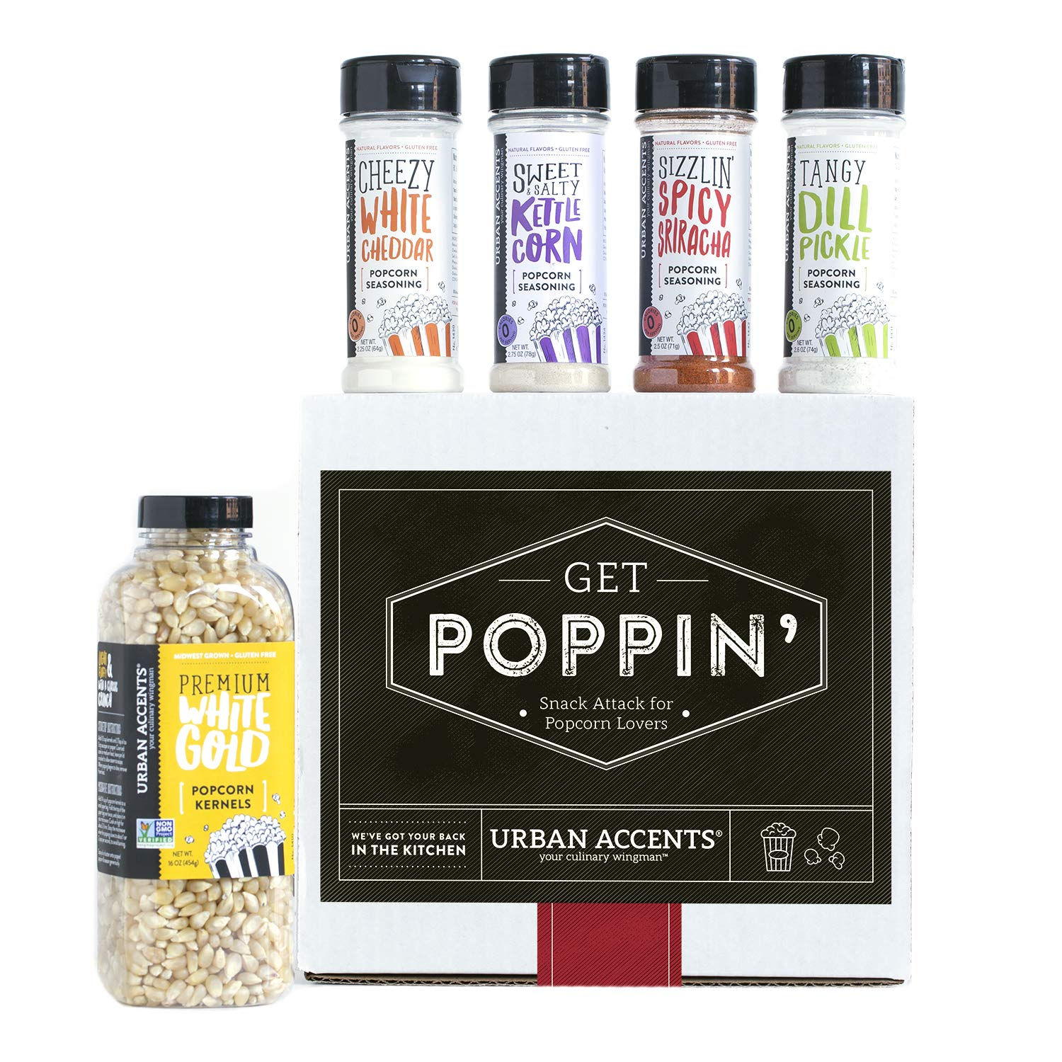 Gourmet Popcorn Seasoning Kit - oddgifts.com