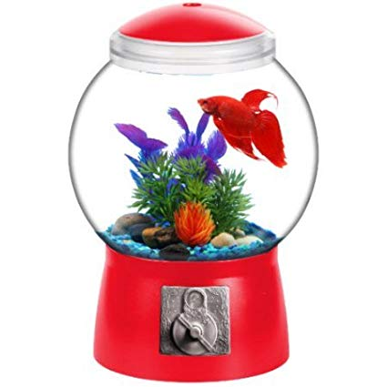 Gumball Machine Fishbowl - OddGifts.com