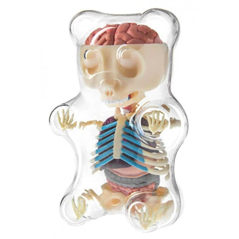 Gummy Bear Anatomy Puzzle - OddGifts.com
