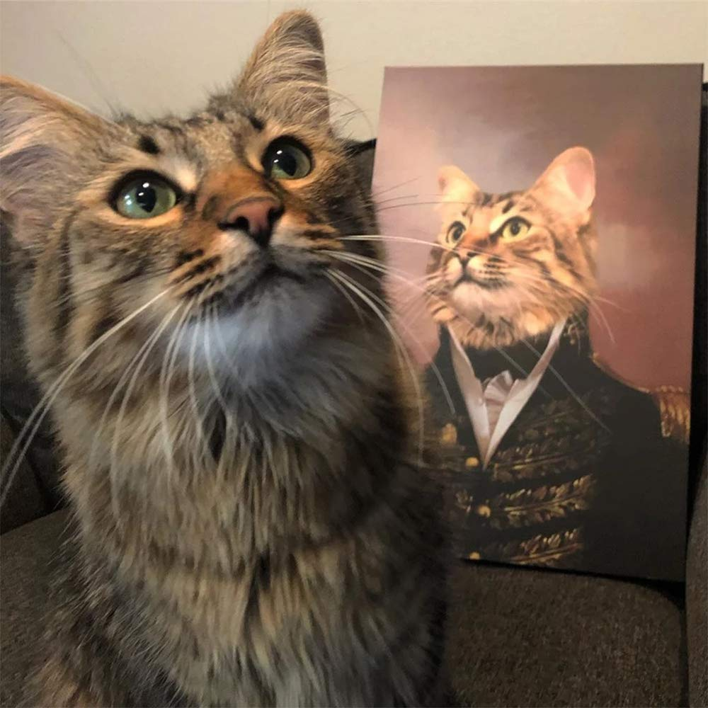 Portraits For Pets - oddgifts.com