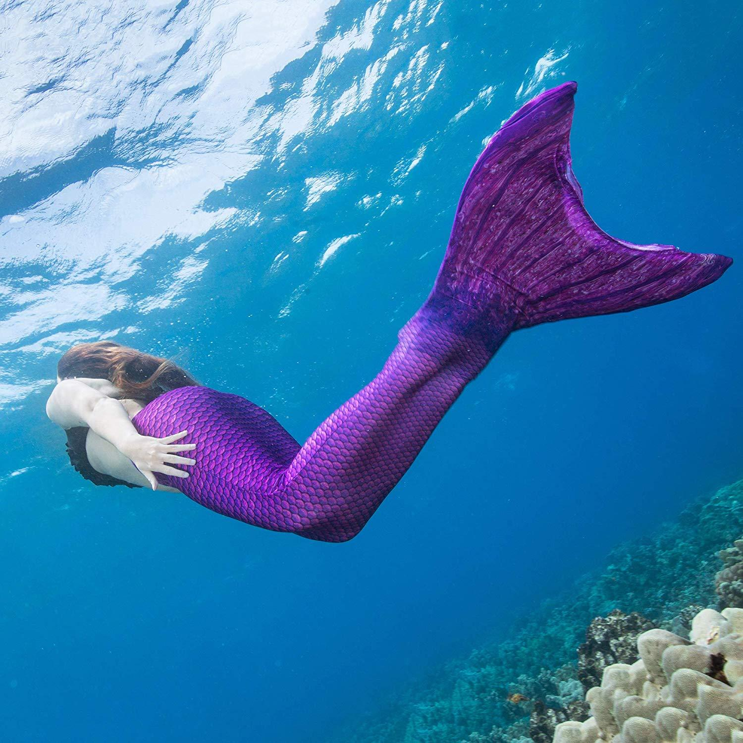 Realistic Mermaid Tails - oddgifts.com