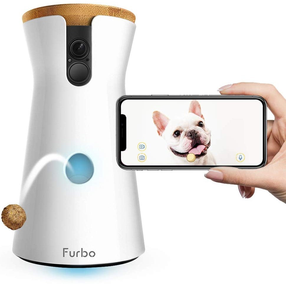 Treat Tossing Pet Camera - oddgifts.com