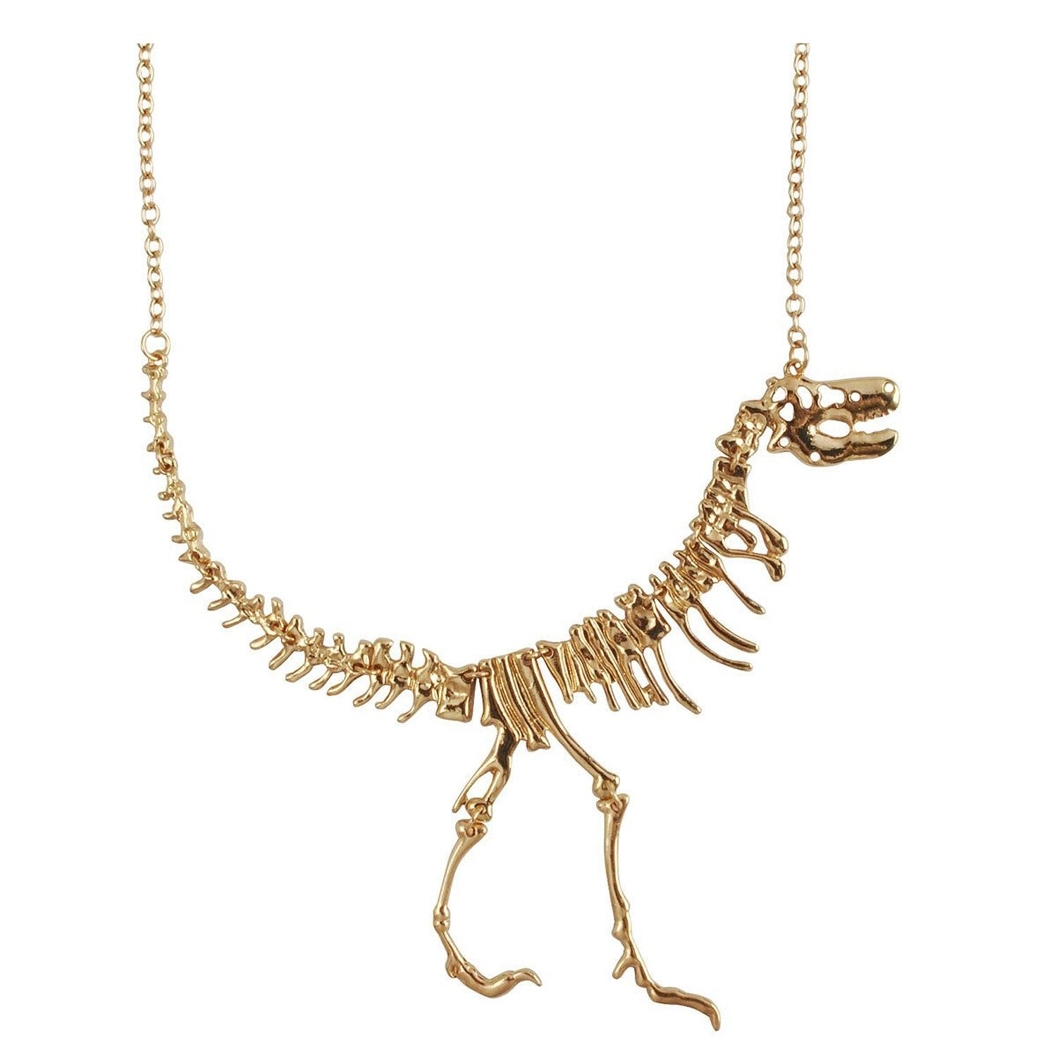 Dinosaur Bone Necklace - OddGifts.com