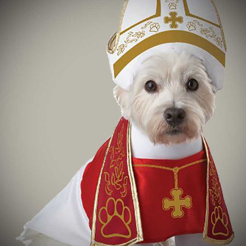 Holy Dog Costume - OddGifts.com