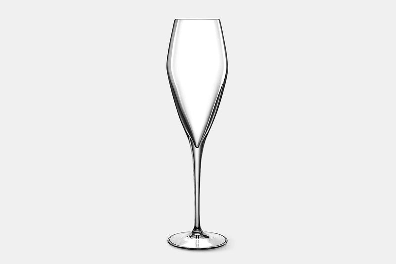 Atelier Champagne Glasses – 9.25 oz – Set of 6