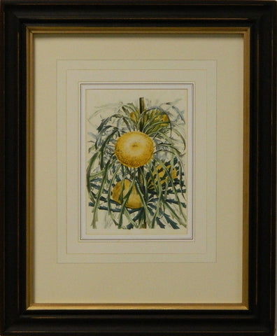 Vintage English Botanical Study Yellow V