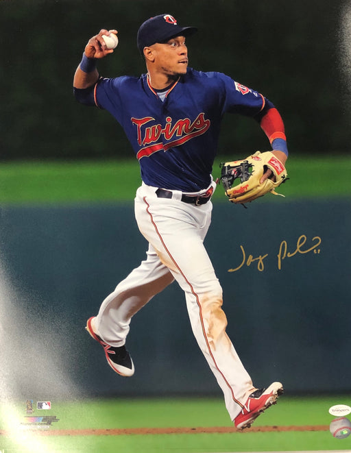 Jorge Polanco Autographed 16x20 Photo