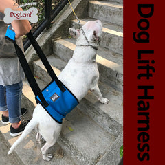 Lift Harness for Large Dogs Weak Hind Legs Elderly Dog Support with Handle S L